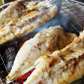 441_aji_syouyu01